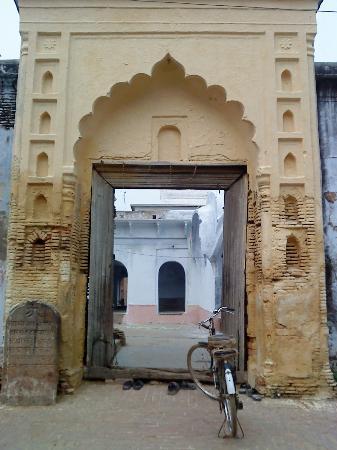 Parijaat Tree: Ill  maintained  Kotwa  Dham (Sanatan  sect)