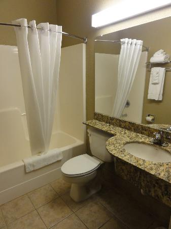 Microtel Inn & Suites by Wyndham Woodstock/Atlanta North: The Bathroom