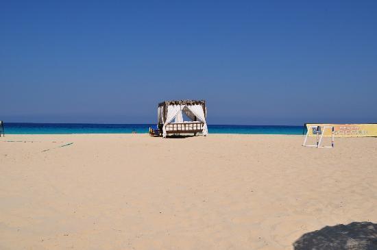 Jaz Almaza Beach Resort: XXX9