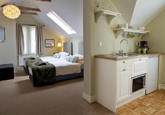 Reykjavik Residence Hotel: Guest Room & Kitchenette