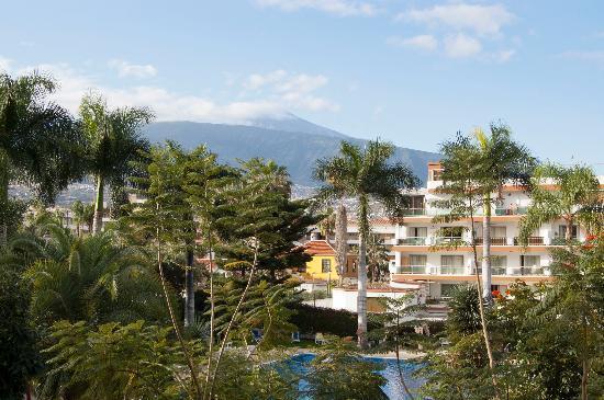 Masaru Apartments: Utsikt mot poolen