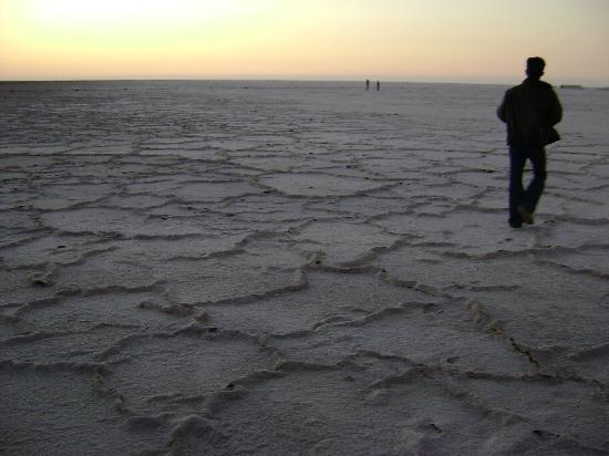 Great Rann of Kutch, White Rann of Kutch, Kutch Tours