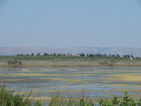 Vendicari Nature Reserve