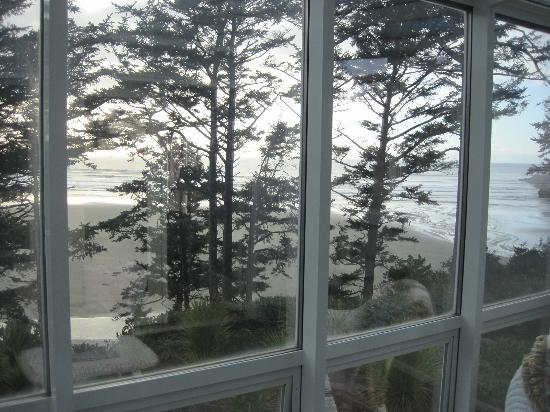 Ocean House Bed and Breakfast: View from sunroom