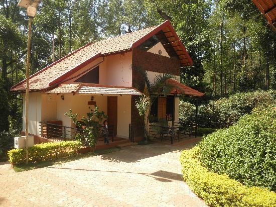 Honey Pot Homes: Cottage