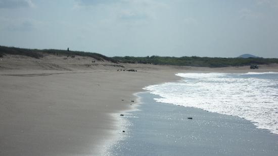 Mazatlan Tours: riding on the beach