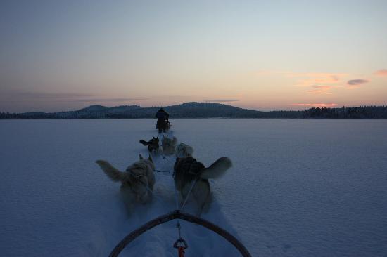 Jukkasjarvi VildmarksTurer AB: the amazing landscape