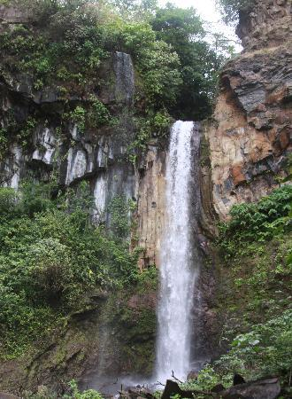 Playas del Coco, Kosta Rika: Hiked to waterfall