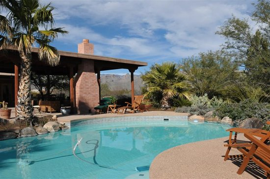 Cactus Cove Bed and Breakfast Inn: pool deck -4
