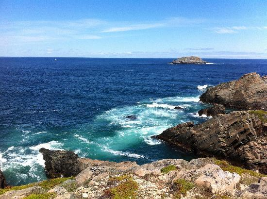 The Harbour Quarters Inn: View from Cape Bonavista