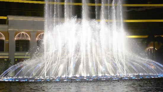 Performance Lake at Wynn Palace: Performing Lake at the Wynn(6)
