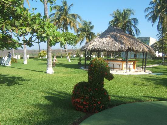 Posada Real Puerto Escondido: bar on lawn
