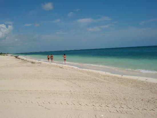 Excellence Playa Mujeres: at 30 seconds of th resort beach(left)
