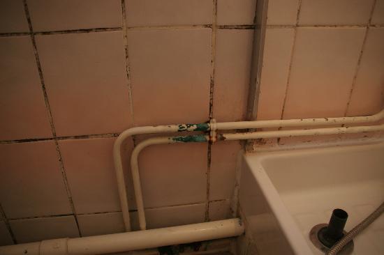 Hotel Sofia: rust & mildew