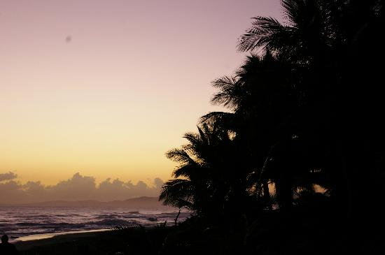 Hotel Celuisma Cabarete : sunrise on the beach