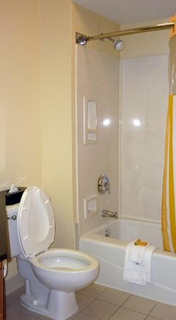La Quinta Inn & Suites Charleston Riverview: Bathroom