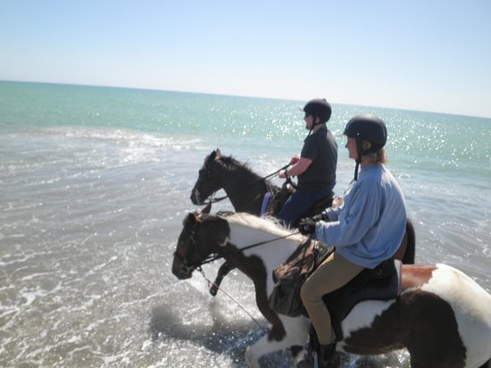 Clive, New Zealand: Riding through the waves!