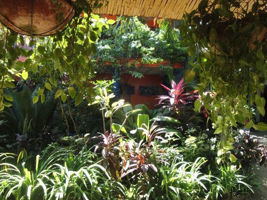 Hotel Los Cisneros: Jardín