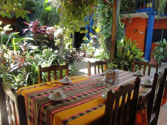 Hotel Los Cisneros: Alrededor del hotel