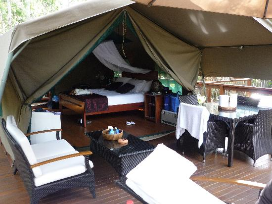 Lane Cove River Tourist Park : The tent