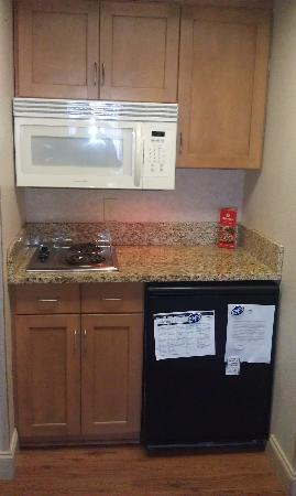 Homewood Suites Orlando-International Drive/Convention Center: They show and advertise a Full Size Fridge but did not receive one.