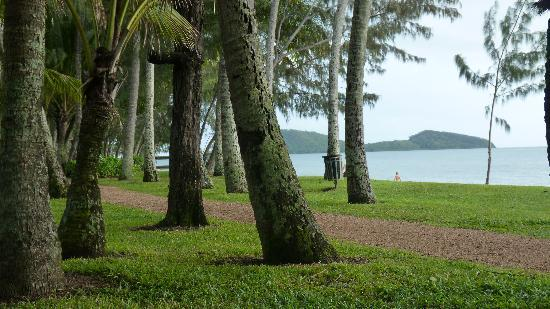 Oasis at Palm Cove: Palm Cove