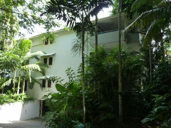 Oasis at Palm Cove: Oasis Building