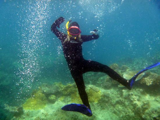 أوسايس آت بالم كوف: daughter on the reef