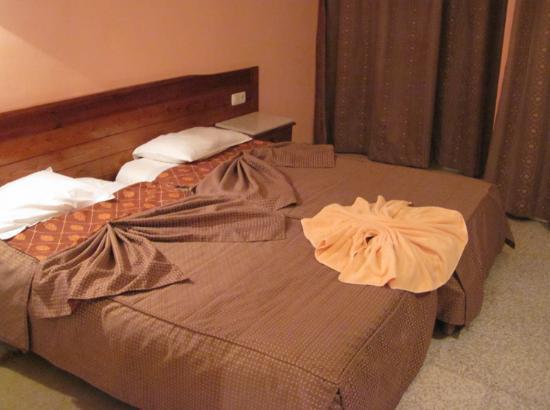 Amina Hotel : 古びたタオルで