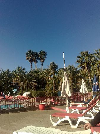 Club Jumbo Marrakech: pool area