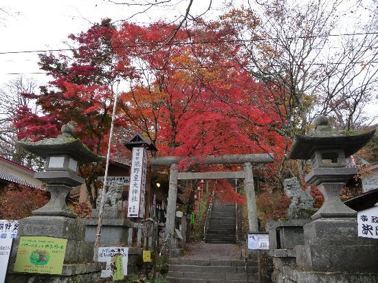 ‪Kumanokotai Shrine‬