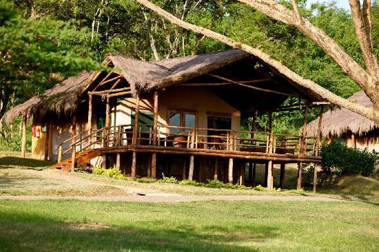 chobe safari lodge updated 2018 prices reviews uganda. Black Bedroom Furniture Sets. Home Design Ideas