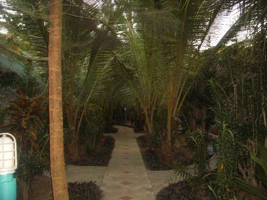 Lanta Island Resort: wie im Dschungel....