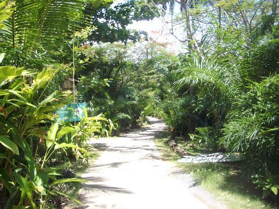 Lanta Island Resort: Entspannung pur....