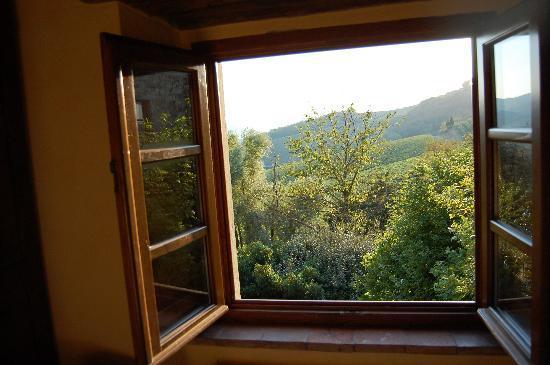 Fattoria Poggerino: room view