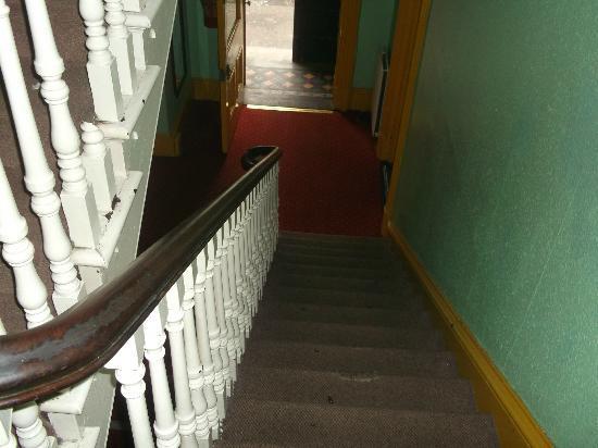 Paddy's Palace Belfast: entrée