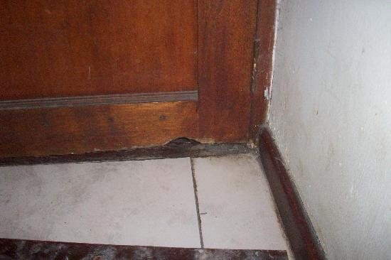 Milnerton, South Africa: door where had been chewed by vermin in the past