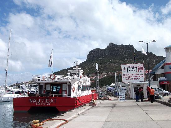 Duiker Island: Nauticat Charters boat with Seal Island Trip departure time