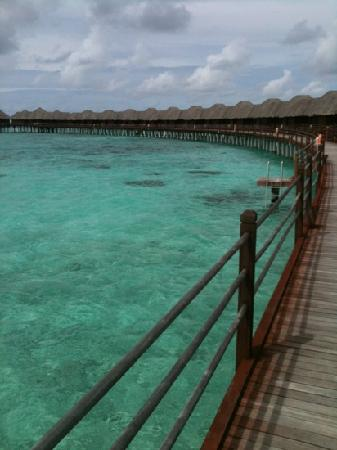 Sun Aqua Vilu Reef: stupenda piscina naturale