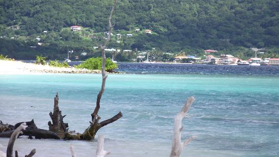 Sandy Island: Your own little bit of paradise