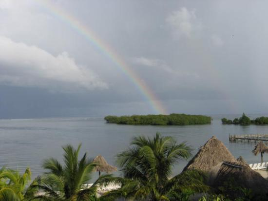 Turquoise Bay Dive & Beach Resort: rainbow on the mangrove