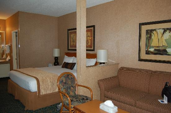 BEST WESTERN PLUS Park Place Inn - Mini Suites: King room from the door
