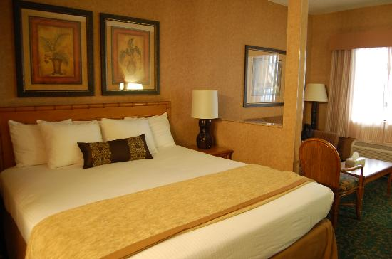 Best Western Plus Park Place Inn - Mini Suites: King bed and couch from bathroom