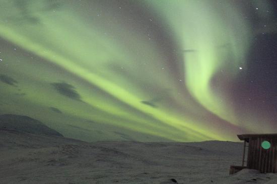 STF Abisko Mountain Station: Lights above Aurora Sky Station