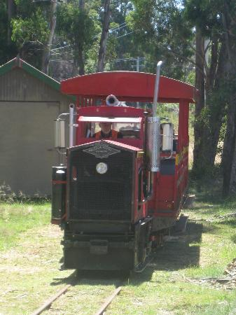 Ida Bay Railway: The little engine that pulled us along!