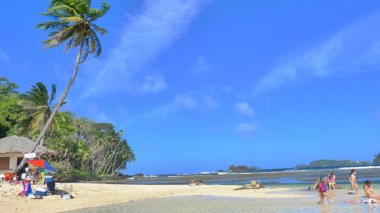 Hostel Puerto Lindo : isla mamey, frente al hostal