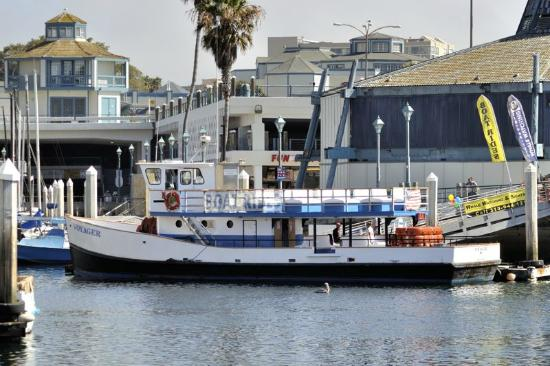 Redondo Beach Whale Watch Voyager At Berth