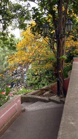 Jardim do Sao Francisco (S. Francisco Garden): Jardim San Francisco (3)