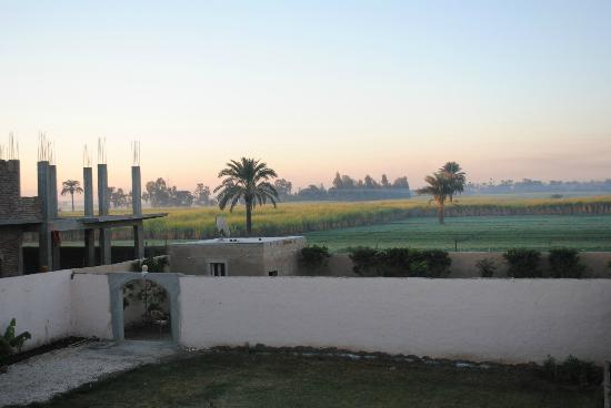 New Memnon Hotel: The garden and fields view from the room