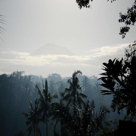 Bunga Permai Hotel: Uitzicht om 06.00uur